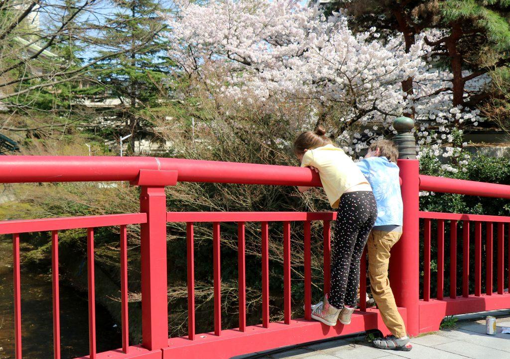 Bridge in Arima Onsen